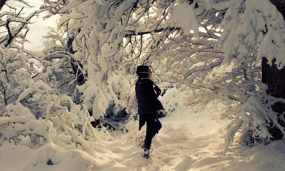 essay on winter season 21102018 essay persuasive speech characteristics essay on natural resources japanese knotweed analytical essay star wars essay persuasive speech characteristics.