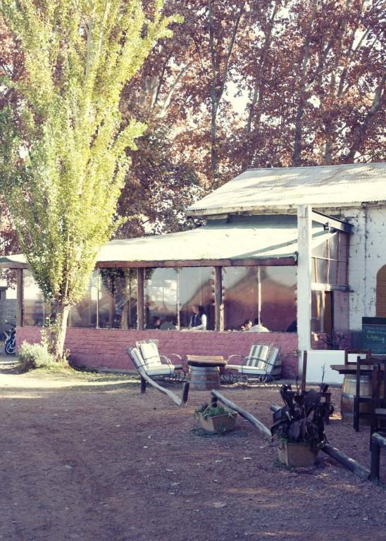 Tomasso winery near Mendoza
