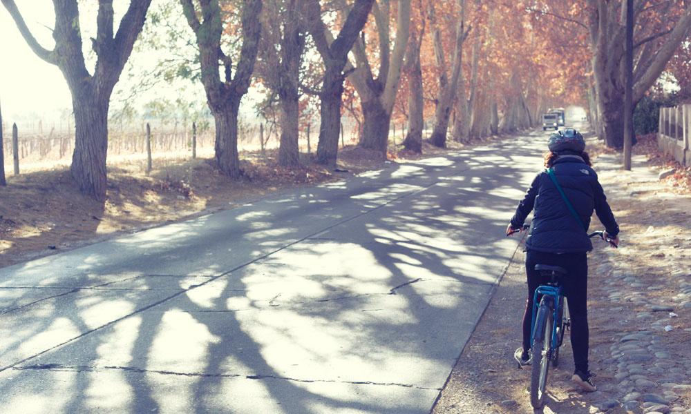 Victoria on the Ruta de Vino near Mendoza
