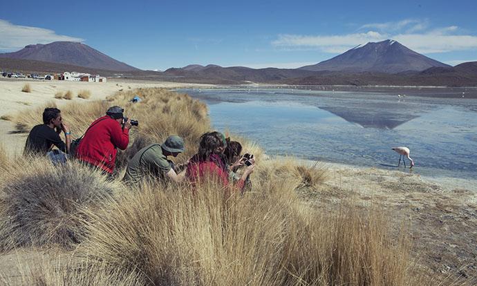 Flamingo hunting Bolivia