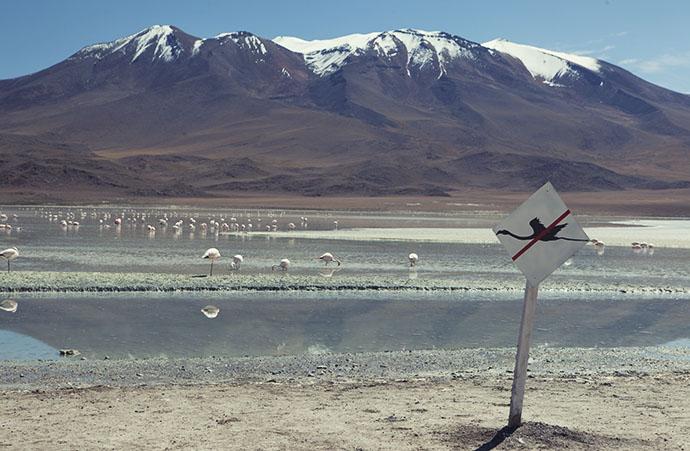 No flying in Salar de Uyuni