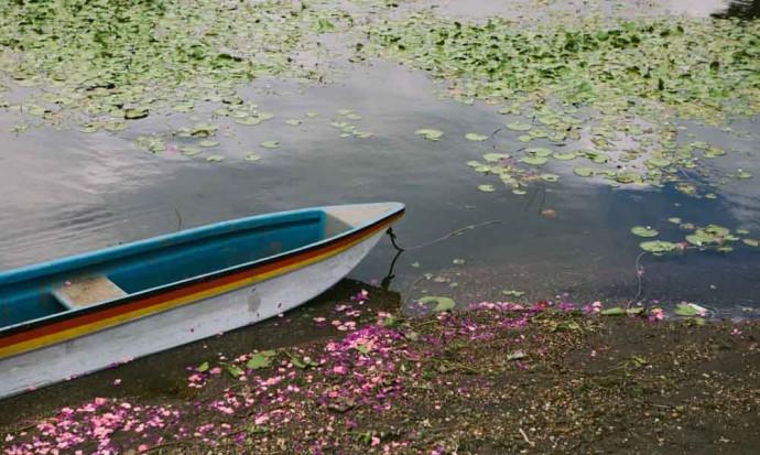 Boat on Lake Bedugal
