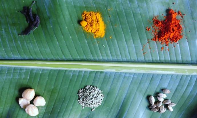 Ayurvedic herbs, Ubud