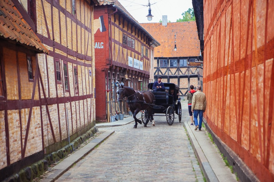 Aarhus horse and carriage