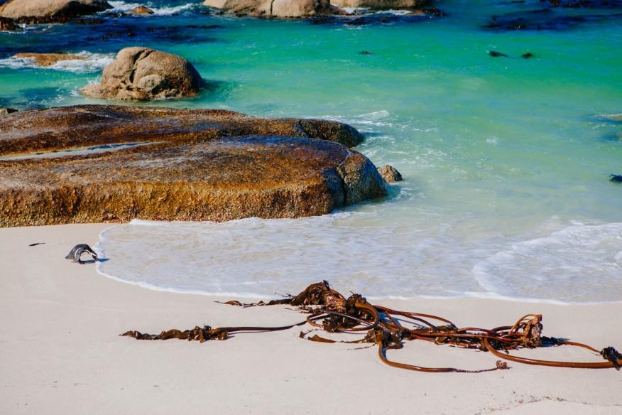 Foxy Beach, South Africa