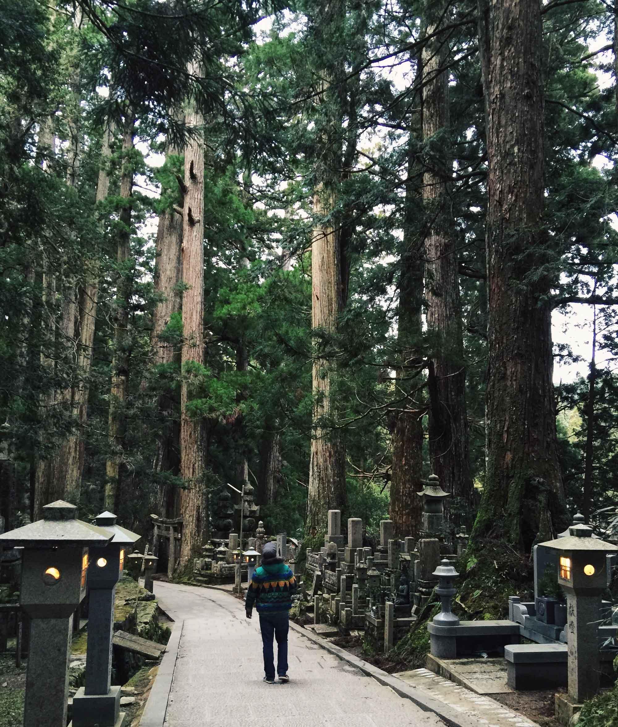 Instagramming Japan - Koyasan cemetery