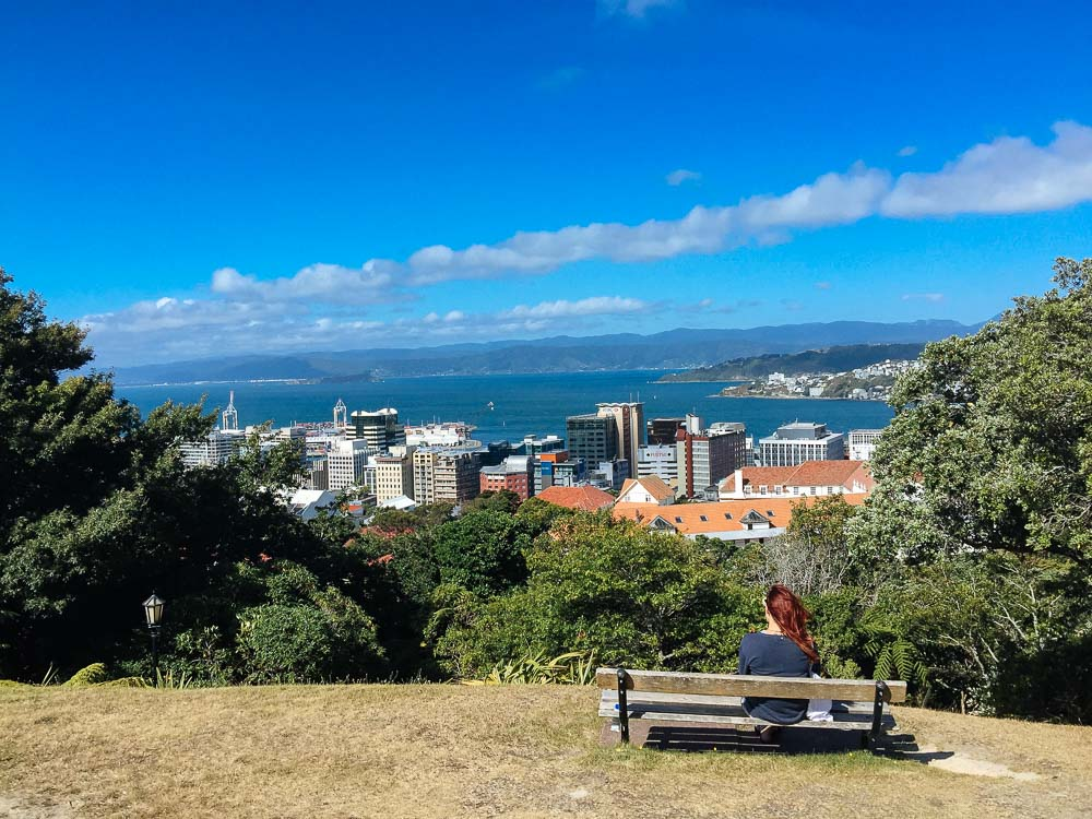 New Zealand road trip Wellington