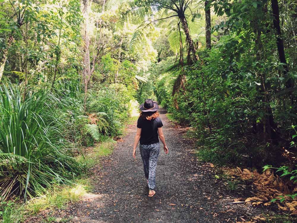 Plan a trip to New Zealand - Waipoua
