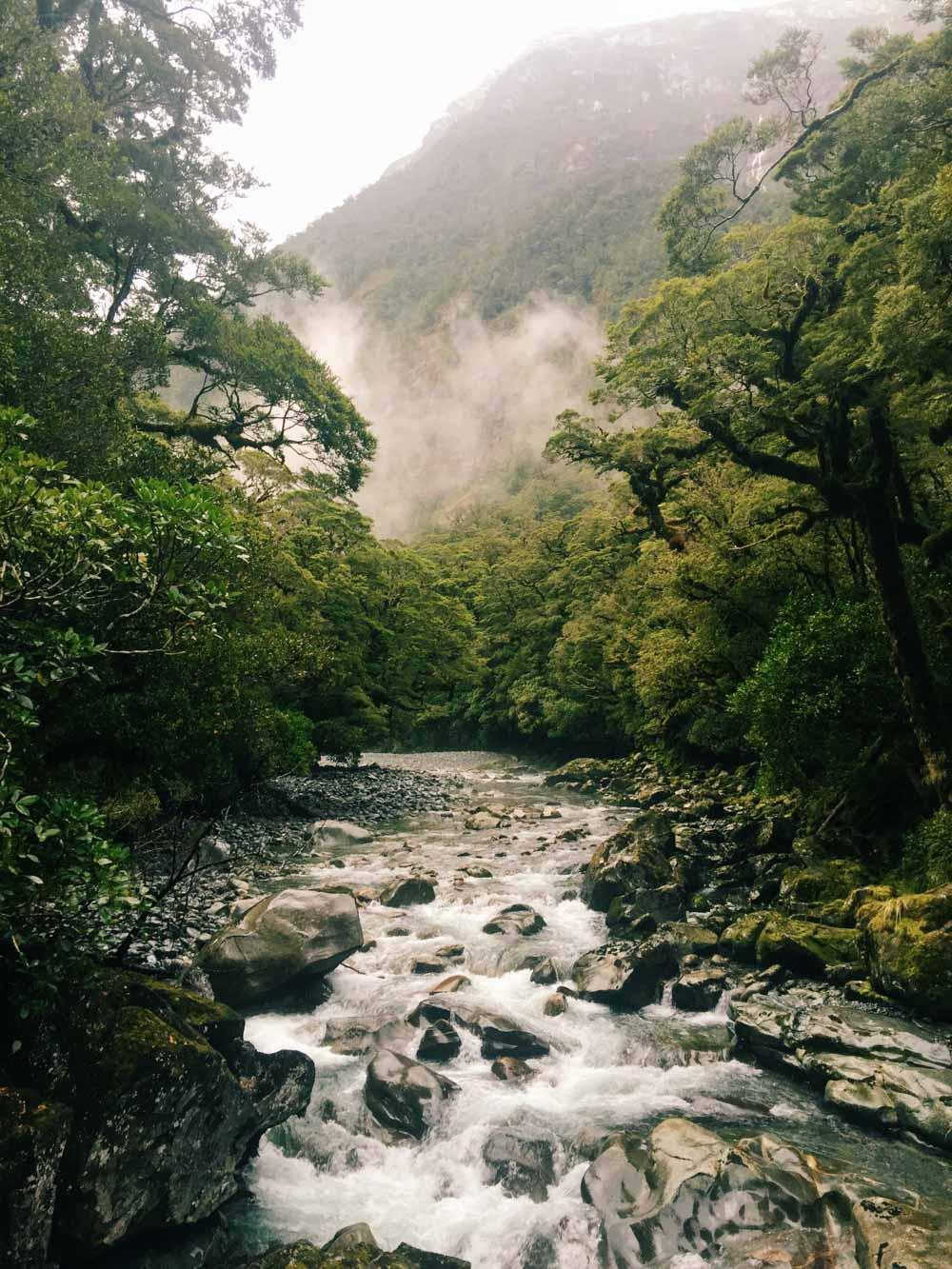 Plan a trip to New Zealand - Milford Sound