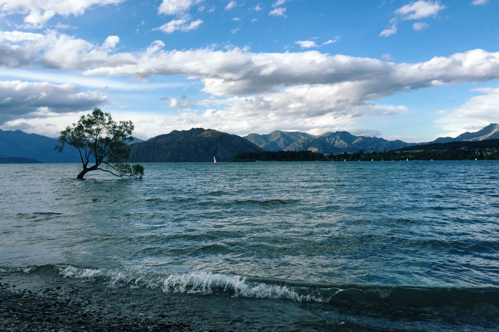 New Zealand trip - Wanaka