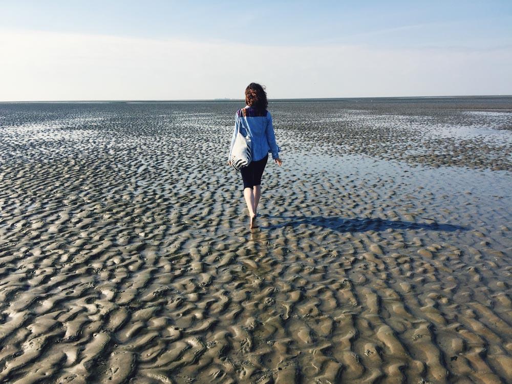 Wadden Sea walking tour