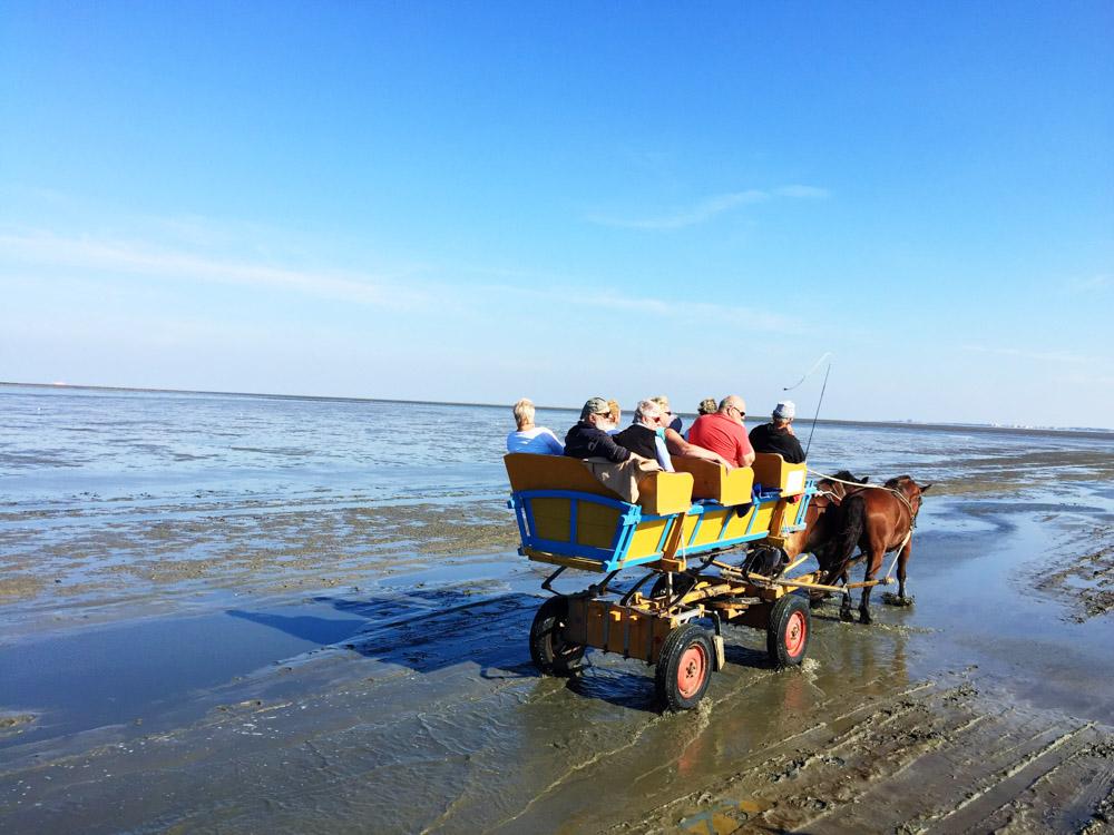 Wattwagen Cuxhaven