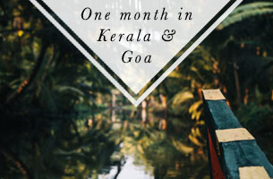 One month in Kerala and Goa