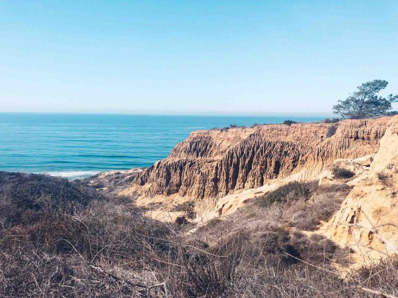 California Road Trip Itinerary - Torrey Pines State Reserve