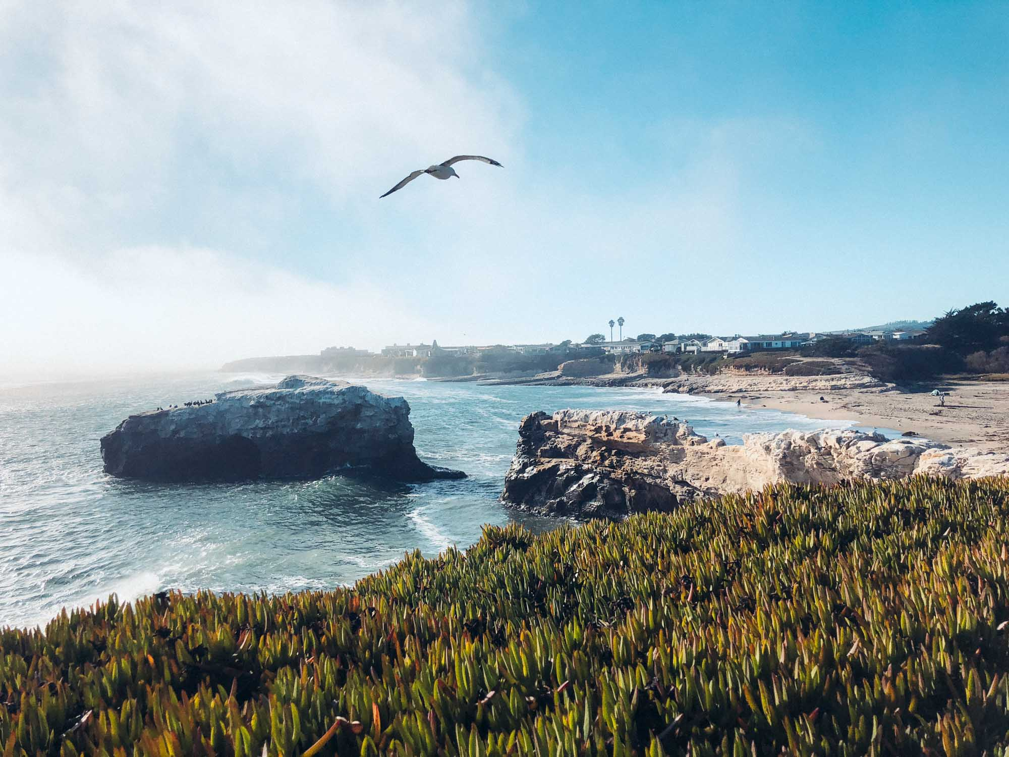 Fun things to do in Santa Cruz