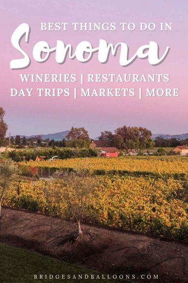 Best things to do in Sonoma County
