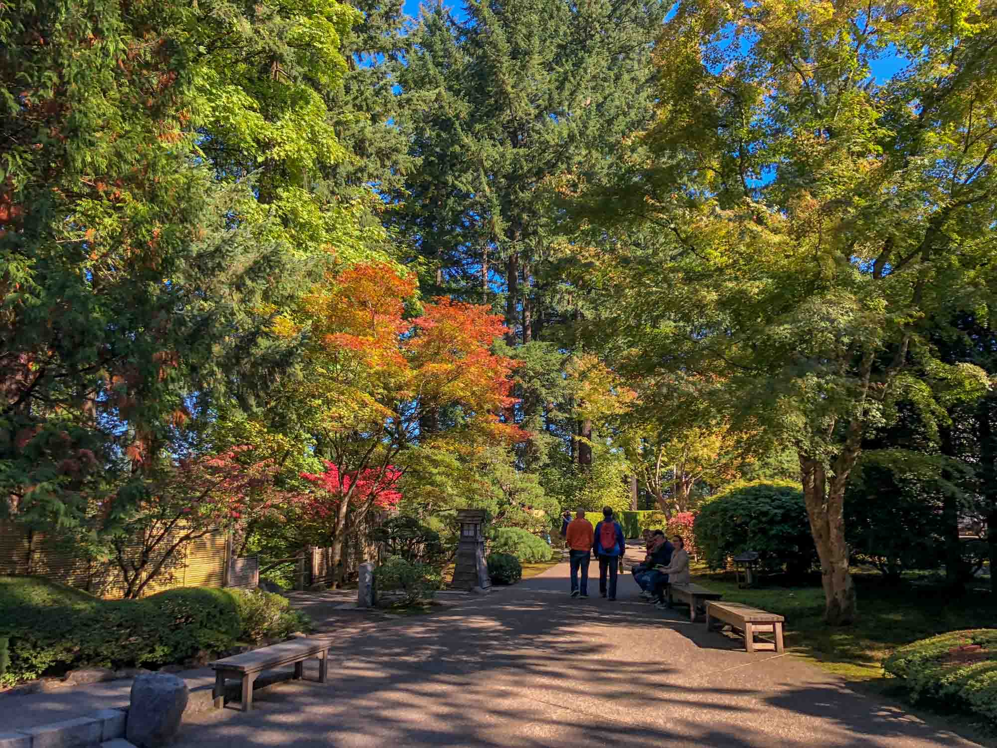 Best things to do in Portland: Japanese garden