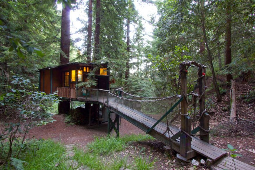 Redwood treehouse Santa Cruz AirBnB
