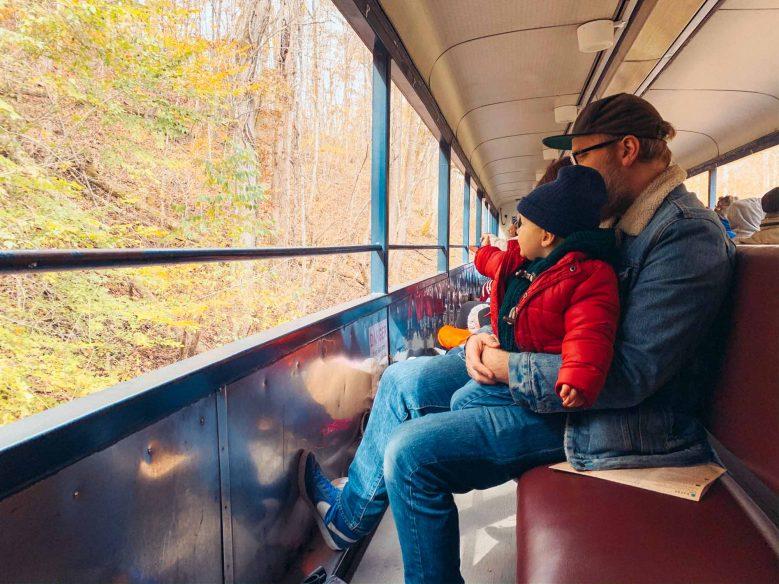 Road Trip Southern US - Blue Ridge Railway