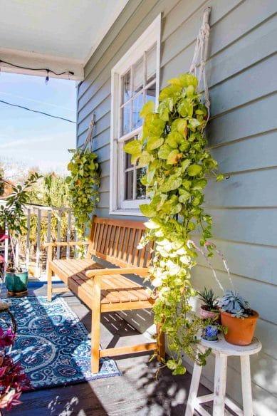 Southern Shangri-La - Airbnb Charleston