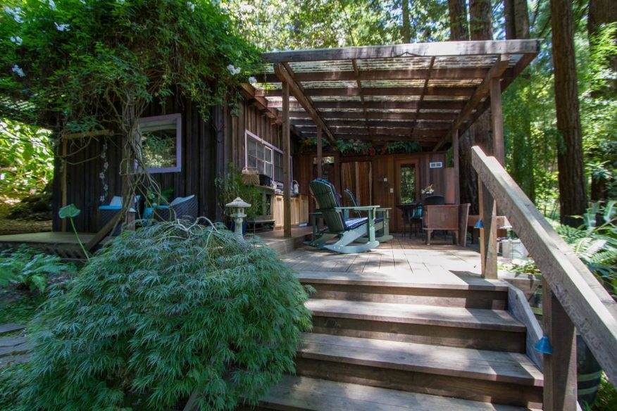 Rustic Cabin in Redwoods - Airbnb Sonoma